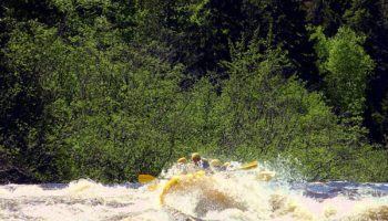 Spring Whitewater Rafting in Maine: The Dead River