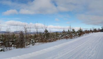 Snowmobile Trail Conditions Report: The Forks, Maine March 9