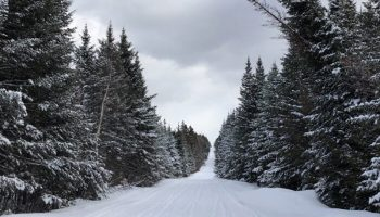 Snowmobile Trail Conditions Report: The Forks, Maine February 28, 2019