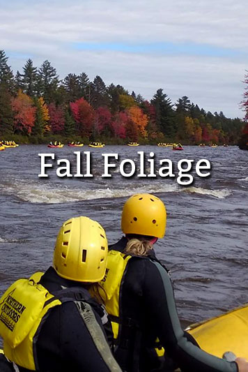 Fall Foliage on the Dead River