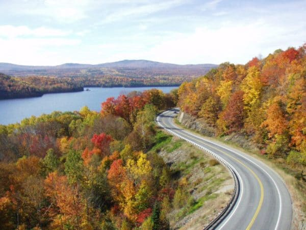 Scenic byway foliage