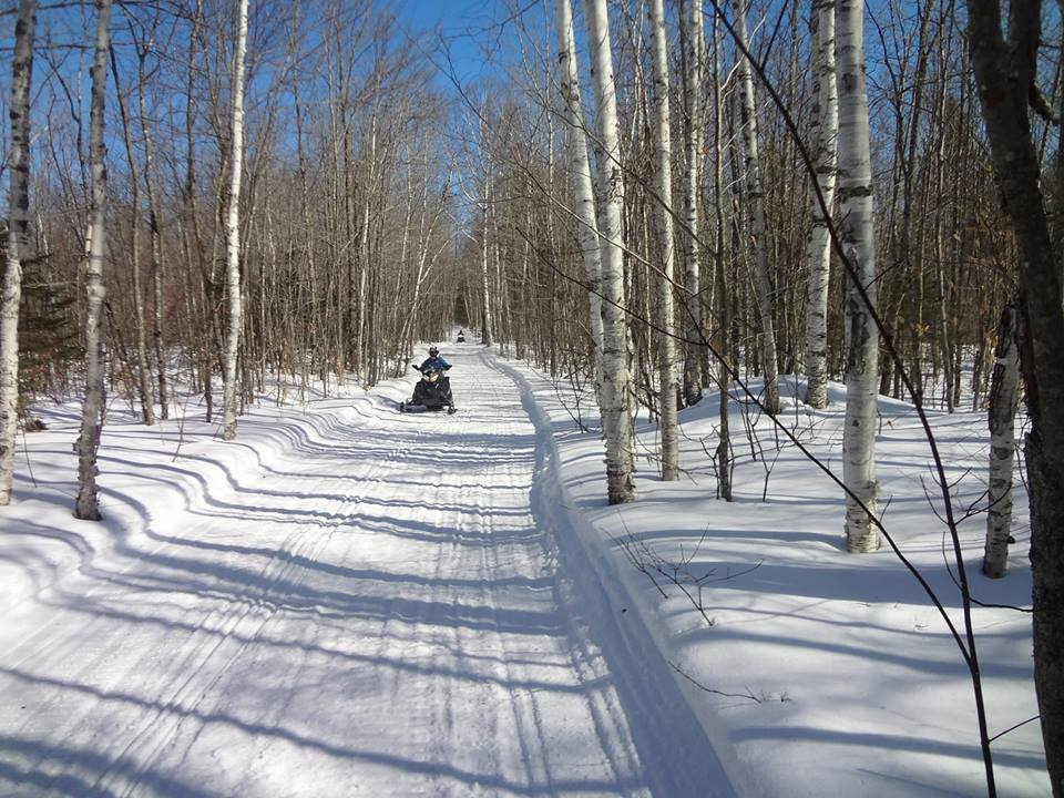 Maine snowmobile trails in the woods