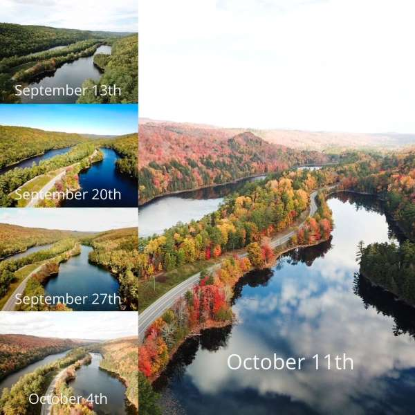 Northern Outdoors Fall Foliage 2021