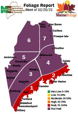 Maine State Foliage Report Week 5